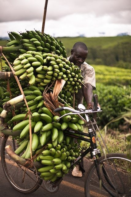 africa-travel-bicycles